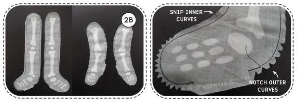 notch curves
